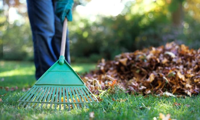 Yard Clean Up Services
